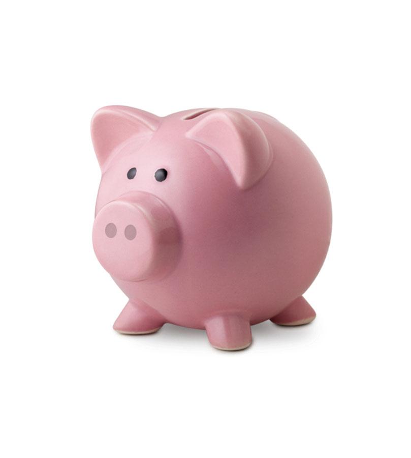 optimizacion presupuesto